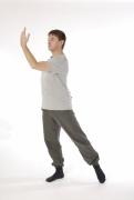 18 Übungen Teil 1, 2 und 3 shibashi, 8 Brokate, Fan Huan Gong, Der schwimmende Drache, Ursprung des Lichts