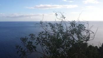 Achtsamkeit, Qigong Ausblick übers Meer