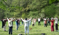 Qigong im Park Sommeraktion 2013
